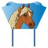 Drak Sleddy Pony