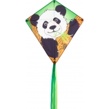 Drak Eddy Panda