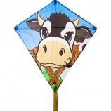 Drak Eddy Cow