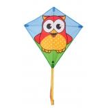 Drak Eddy Owl