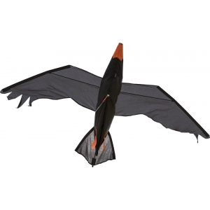 Drak Raven 3D