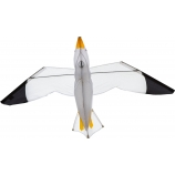 Drak Seagull 3D